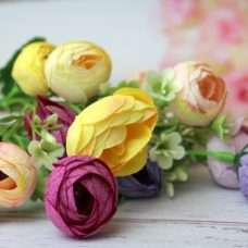 Камелия цветочки