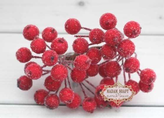 Ягоды в сахаре Красные