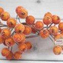 Ягоды в сахаре Оранжевые