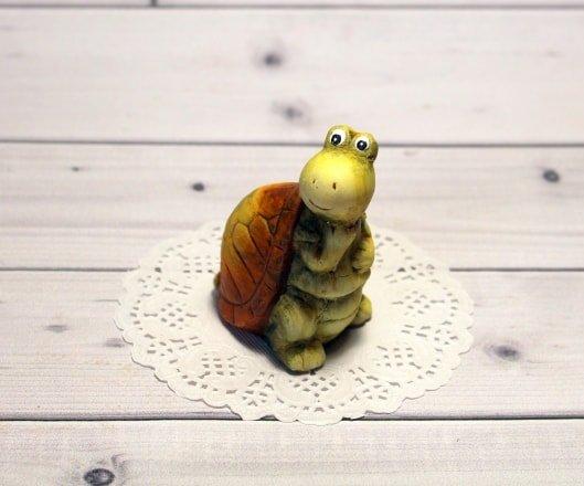 Черепаха сидит