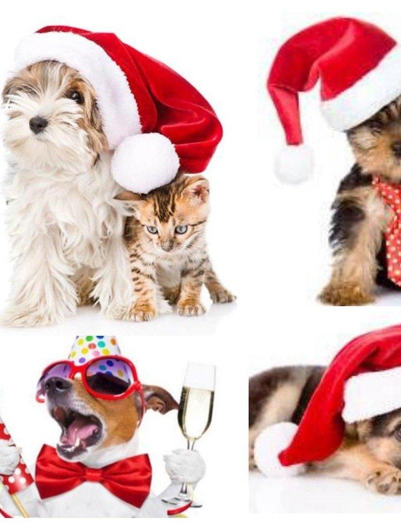 """Водорастворимая бумага """"Новогодние собачки"""""""