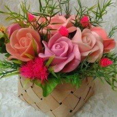 Роза Полу бутон2