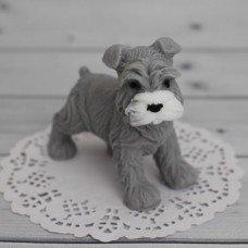 Собака Бродяга