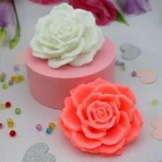 Роза круглый лепесток