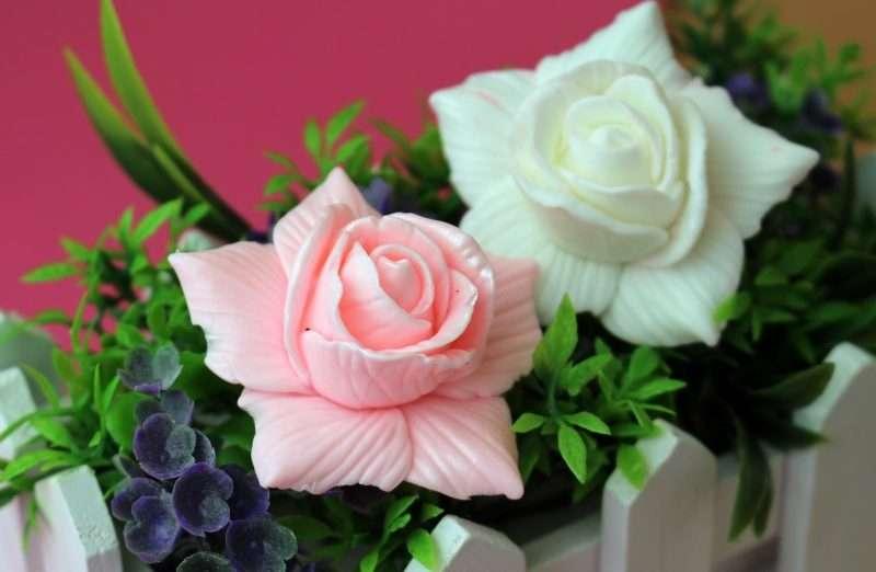 Роза Дольче маленькая