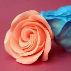 Роза Виктория для букетов