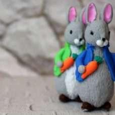 Заяц в куртке