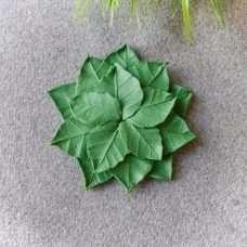 Подложка лепестки роз