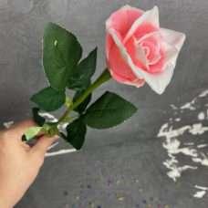 Нога розы 60см